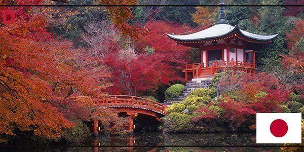 مدينة كيوتو2