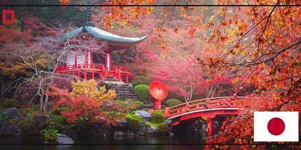 مدينة كيوتو4