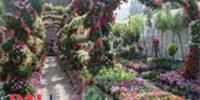 حديقة الأورمان1