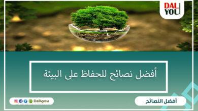 نصائح الحفاظ على البيئة